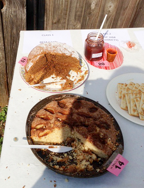 The winning coffee sponge got a bit hot in the sun and cream started to melt. The rhubarb and strawberry jam was also a winner. A taste sensation. The apple cake was made with apples from the allotment orchard.