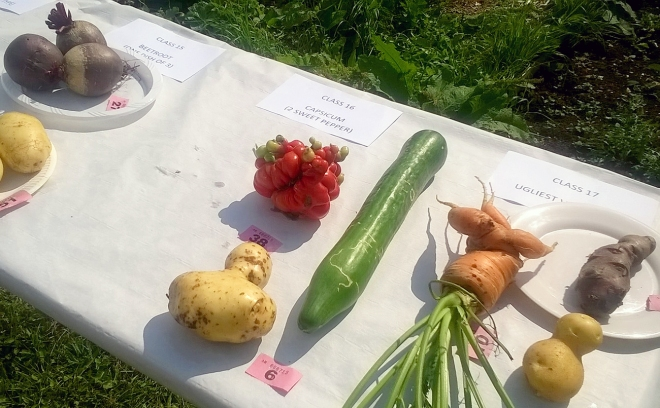 The mutant tomato was a clear winner in the Ugliest Vegetable category