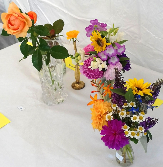 Cut flowers and single rose classes: Fragrant and colourful.