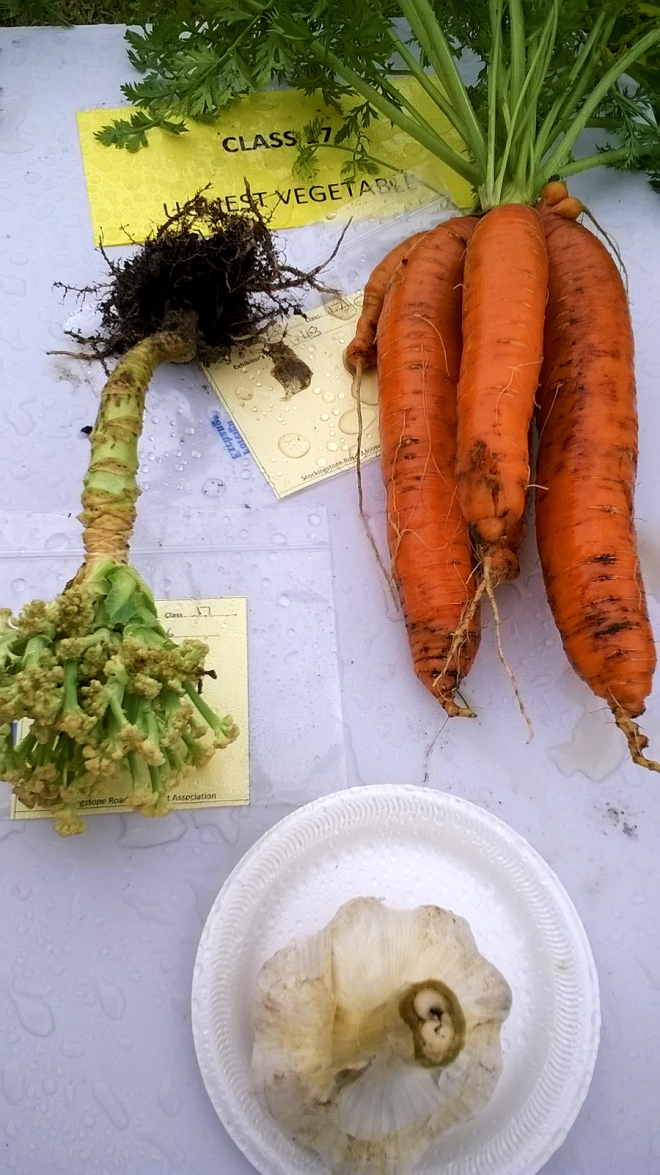 Ugliest Vegetable Category: The carrot(s) was a clear winner.