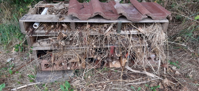 Bug hotel ready for tenants to move in